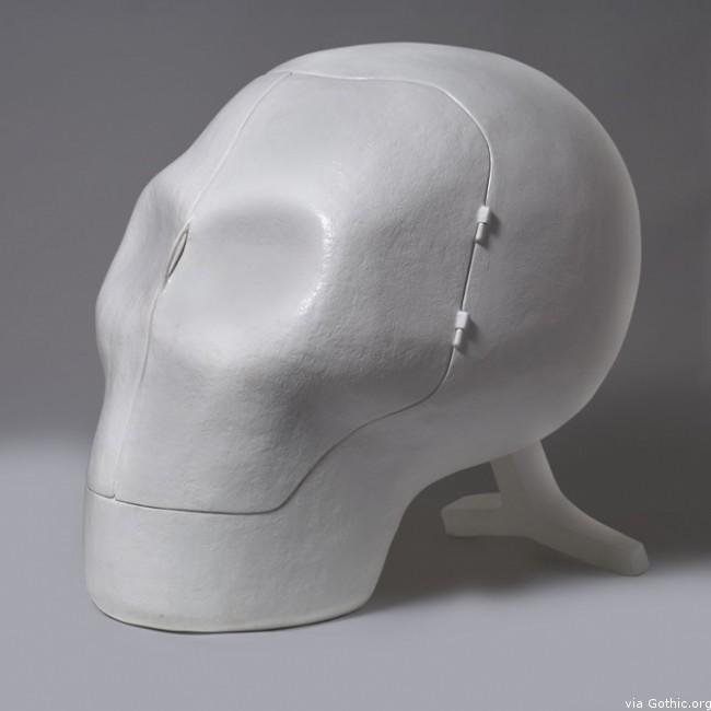 skull side