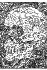 Skull Optical Illusions
