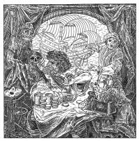 skullillustration2